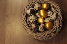 Happy Easter! Frohe Ostern! #Wachtel #Quail