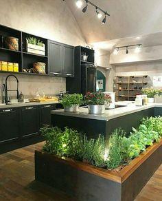 47 modern architecture and garden in house interior design of a bright apartmen 1 Kitchen Herbs, Herb Garden In Kitchen, Garden In House, Dream Garden, Best Kitchen Cabinets, Kitchen Cabinet Design, Kitchen Decor, Kitchen Ideas, Kitchen Wood