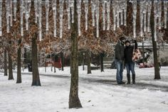 """A couple takes a """"selfie"""" following an ice storm in Toronto Dufferin Grove Park in Toronto on Sunday, Dec. 22, 2013 following ice storm. THE CANADIAN PRESS/Ian Willms  A man walks down the street behind traffic lights with no power following an ice storm in Toronto, December 22, 2013."""