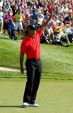Tiger Woods shoots final round 67 to win Memorial Tournament. OH YEAH !!
