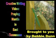 Creative writing video: Praying Mantis in East Tennessee