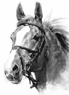 Custom Crystal Glass Block  Photo to Painting Horse Equine Gift FREE Post No2