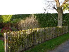 Landschapsafsluiting Living Willow Fence, Garden Art, Garden Design, Country Fences, Natural Landscaping, Diy Greenhouse, Farm Gardens, Garden Styles, Beautiful Gardens