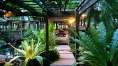 CG Tan, inspirational gardener in Bali. Love the dark timber gazebo, covered in quisqualis indica - so pretty and lovely scent.