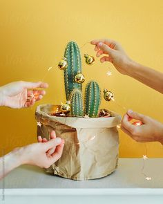 People decorating cactus with Christmas garland by Duet Postscriptum for Stocksy United