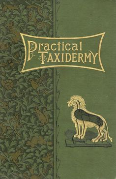 19th century book cover – Practical Taxidermy