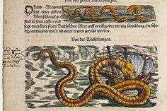 Sea serpent, deviourrng a ship. From Conrad Gesner's 1588 Historia Animalium.