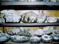 Cabrera Museum, Ica Stones, Ica, Peru. Travels & Tours, Pictures, Photos, Images, Descriptions, Information, & Reviews.