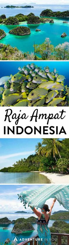 Visit Raja Ampat, one of Indonesia's last frontiers. Beautiful beaches, stunning diving, and the best island hopping imaginable.