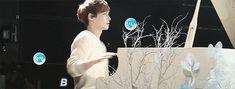 hahaha Zhang Yixing can u not