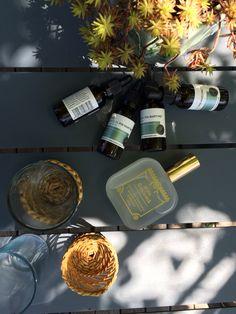 L huile de graines de pin Océopin est le sérum visage anti age indispensable. www.oceopin.com/shop