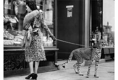 Phyllis Gordon takes her pet cheetah shopping in London in 1939. Photograph by Andy Irvine.