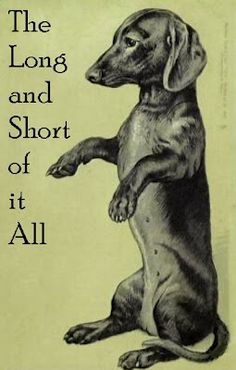 The Long and Short of it All: A Dachshund Dog News Magazine: Dachshund Humor