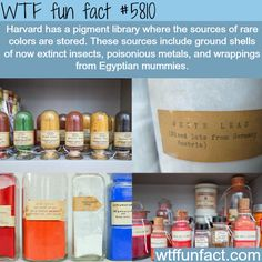 Harvard pigment and colors library - WTF fun facts