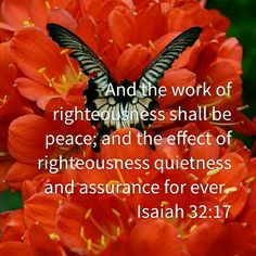 And the work of righteousness shall be peace; and the effect of righteousness quietness and assurance for ever. Isaiah 32:17(KJV)