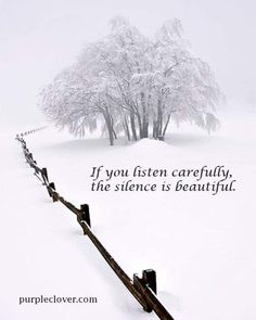 If you listen carefully, the silence is beautiful.