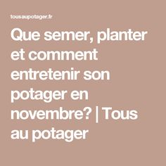 Que semer, planter et comment entretenir son potager en novembre? | Tous au potager