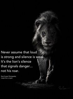 Lion Quotes For Strong Life Funny Quotes About Life, Inspiring Quotes About Life, Quotes About Lions, About Me Quotes, Funny Sayings, Badass Quotes, Positive Quotes, Motivational Quotes, Inspirational Quotes