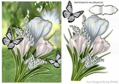 White Spring Crocuses with butterflies A5 on Craftsuprint - View Now!