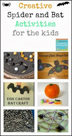 Creative Spider and Bat Activities for the kids