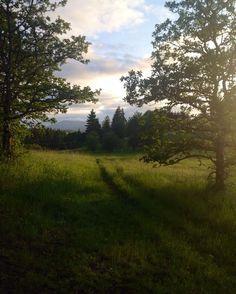Bald Hill, Corvallis, Oregon. Instagram photo by Nicole Johnson.