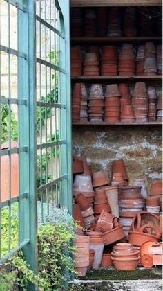 Pots, pots and more pots in the greenhouse garden shed