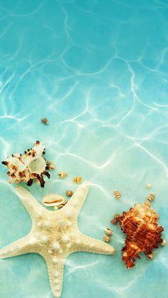 Wallpaper iPhone summer ⚪️
