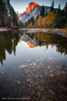 Ryan Alonzo Photography >>>   Fall colors last week in Yosemite Valley — with Half Dome and Yosemite Local at Yosemite National Park.