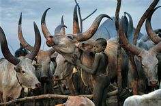 Carol Beckwith, Angela Fisher, africa, african, culture, african culture, african animals, photography