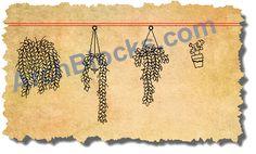 Hanging Plants CAD Symbols