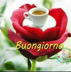 Good Morning, Tea Cups, Tableware, Den, Angel, Iphone, Buen Dia, Good Morning Greetings, Be Nice