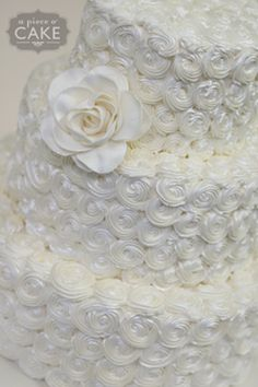 2012 Signature Wedding Cake - Blog - A Piece O' Cake  Love this design and would like it in ombre of verigated colors for matching wedding theme