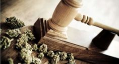 Massachusetts Couple File Lawsuit Against State Police for Return of Seized Cannabis Plants   That's right, patients in medical marijuana states can sue cops over weed.