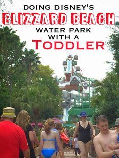 Doing Disney's Blizzard Beach Water Park with a Toddler   CosmosMariners.com