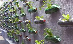 Cara Menanam Hidroponik Dengan Botol Bekas http://slosa.blogspot.com/2016/04/cara-menanam-hidroponik-dengan-botol-bekas.html