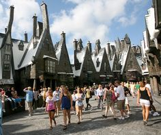 Wizarding World of Harry Potter! and the rest of Universal Studios and Disneyworld where-we-want-to-go