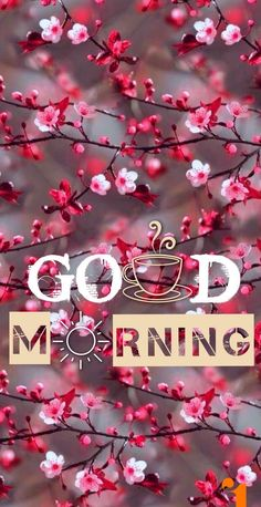 good morning wishes – good morning quotes ` good morning ` good morning quotes for him ` good morning quotes inspirational ` good morning wishes ` good morning beautiful ` good morning greetings ` good morning quotes funny Good Morning Wishes Friends, Good Morning Quotes For Him, Good Morning Cards, Good Morning Greetings, Morning Morning, Early Morning, Morning Coffee, Good Morning Beautiful Pictures, Good Morning Images Flowers