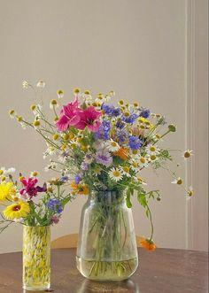My Flower, Beautiful Flowers, Arte Sharpie, Flower Aesthetic, Aesthetic Rooms, Aesthetic Pictures, Planting Flowers, Flower Arrangements, Photo Wall