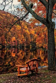 breathtaking view of fall colours reflected in the still water...serene