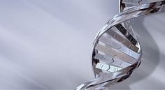 Human Genome: The Future Of Biotechnology In Medicine