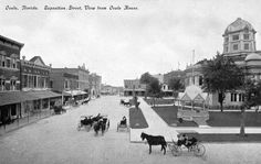 Circa Florida Memory - View looking down Exposition Street from the Ocala House - Ocala, Florida Ocala Florida, Florida Usa, Florida Girl, Vintage Florida, Sandy Beaches, History Books, The Good Old Days, Vintage Photographs, Old Pictures
