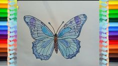 How to Draw a Butterfly Lợn