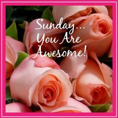 Sunday Happy Sunday Morning, Saturday Sunday, Good Morning, Sunday Greetings, Hello Sunday, Weekday Quotes, You Are Awesome, Have A Great Day, Special Day