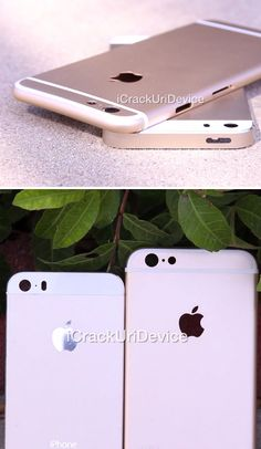 A first look at the new gold iPhone 6?