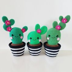 Cactus Friends