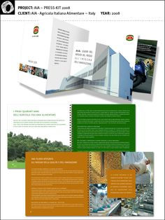 AIA ~ Press Kit by Boogaloo Jam , via Behance