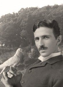 Tesla had a life-long love for pigeons