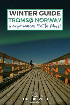 Europe Travel Tips, European Travel, Travel Destinations, Norway Winter, Adventures Abroad, Tromso, Travel Inspiration, Travel Ideas, Winter Activities