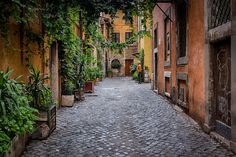 Rome--The Trastevere Neighborhood - Arno Jenkins