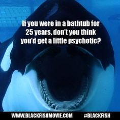 """If you were in a bathtub for 25 years, don't you think you'd get a little psychotic?"" #Blackfish"
